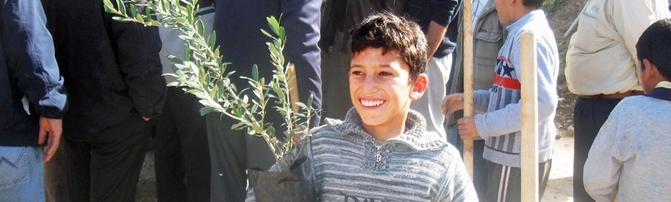 Boy holding a FONSA olive tree to be planted in Qusin village