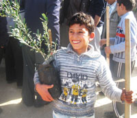 proud boy holding an olive tree in a container